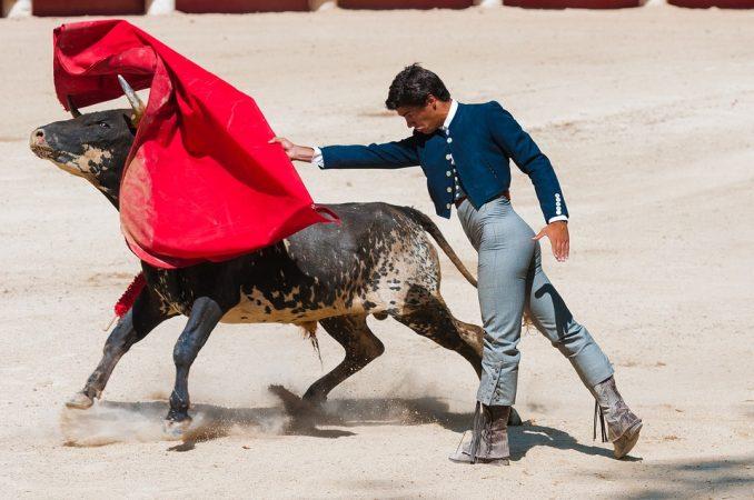 corrida torero