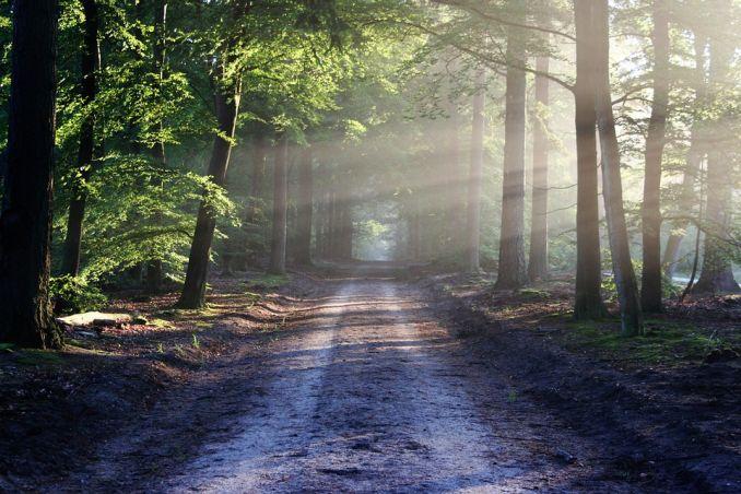 wanderlust significato