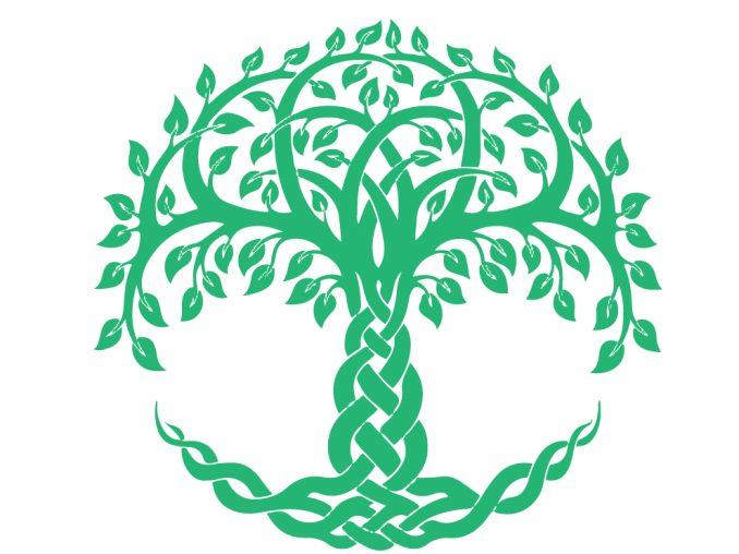 albero della vita simboli celtici