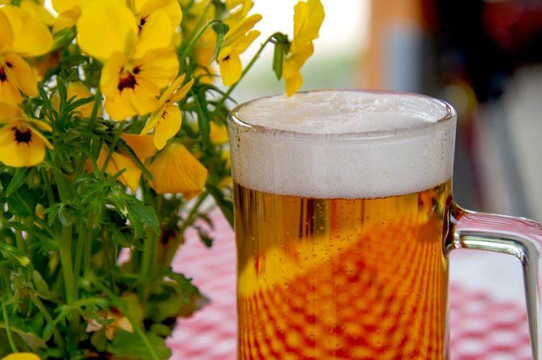 marche di birra più vendute