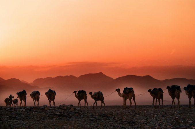 scrittori di viaggio deserto