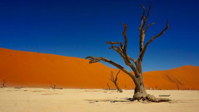 Posti da vedere in Africa Namibia
