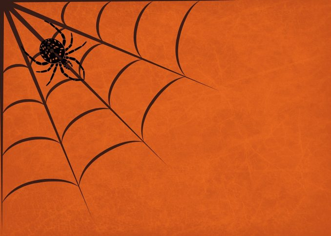 simboli di halloween ragno