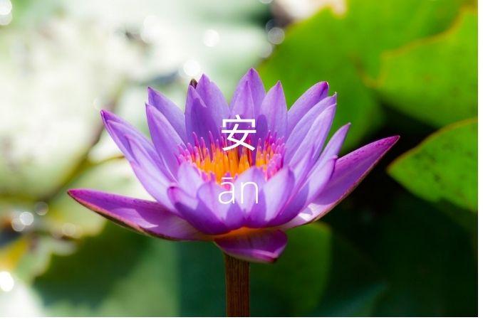 simboli cinesi 3