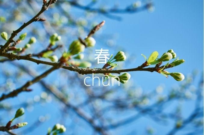 simboli cinesi 4